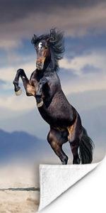 Fotohanddoek Paard