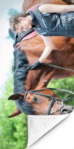 Fotohanddoek Paard-4