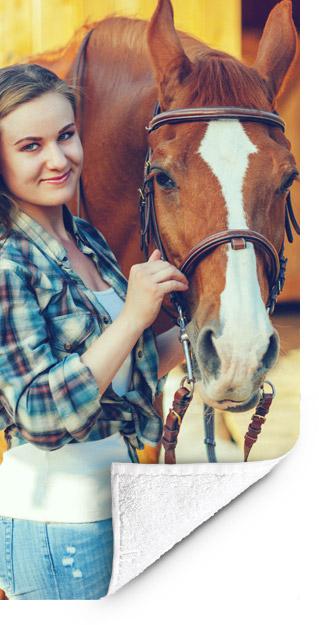 Voorbeeld fotohanddoek paard1
